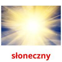 słoneczny picture flashcards