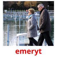 emeryt picture flashcards