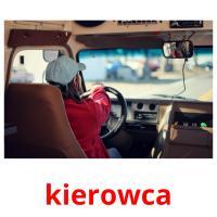 kierowca picture flashcards