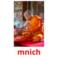 mnich picture flashcards