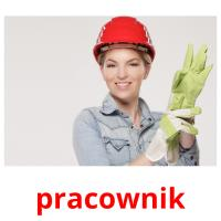 pracownik picture flashcards