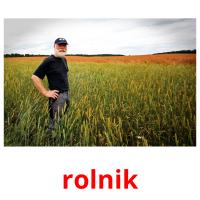 rolnik picture flashcards