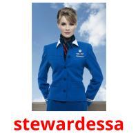 stewardessa picture flashcards