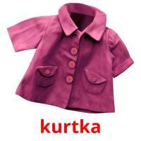 kurtka picture flashcards