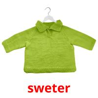 sweter picture flashcards