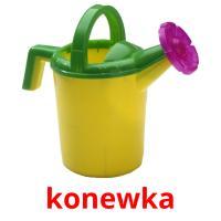 konewka picture flashcards