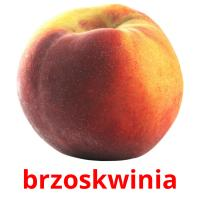 brzoskwinia picture flashcards