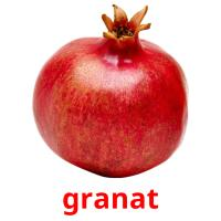 granat picture flashcards