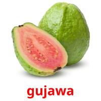 gujawa picture flashcards