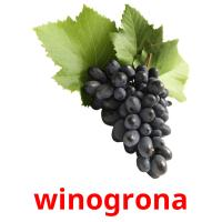 winogrona card for translate