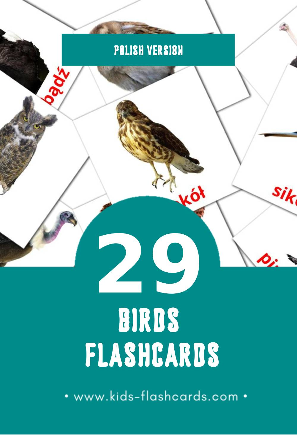 Visual Ptaki Flashcards for Toddlers (28 cards in Polish)