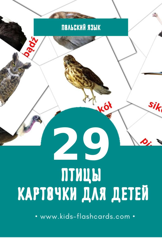 """""""Ptaki"""" - Визуальный Польском Словарь для Малышей (29 картинок)"""