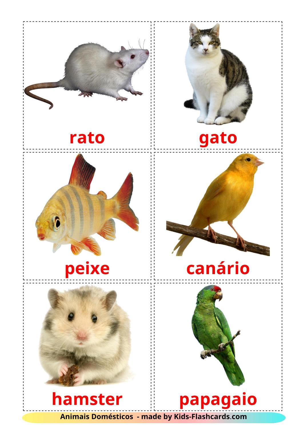 Domestic animals - 10 Free Printable portuguese Flashcards