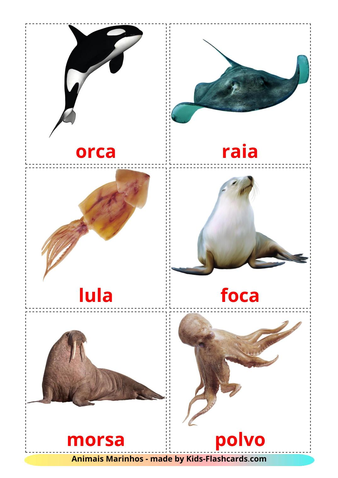 Sea animals picture cards for Kindergarden in portuguese