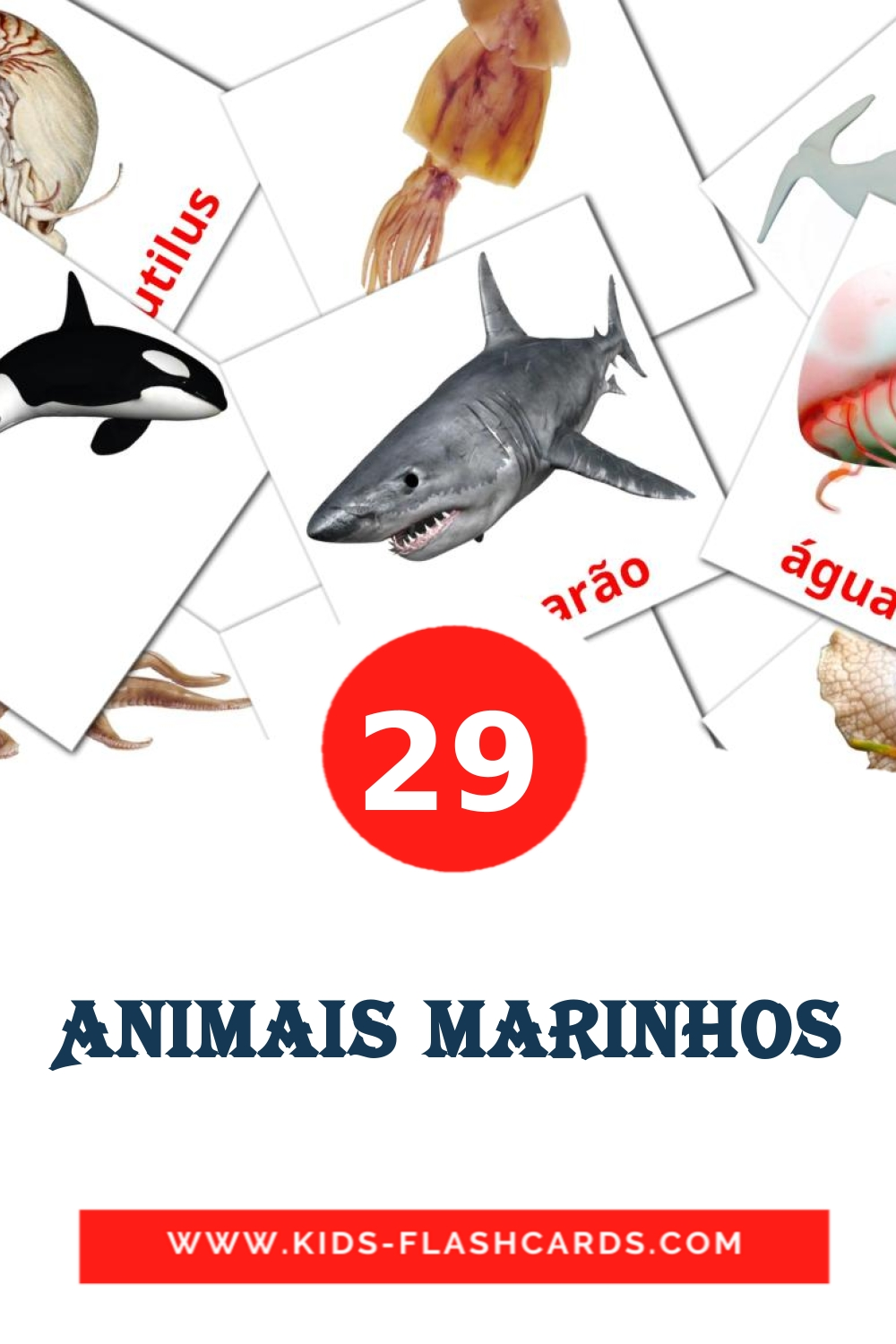 29 Animais Marinhos Picture Cards for Kindergarden in portuguese