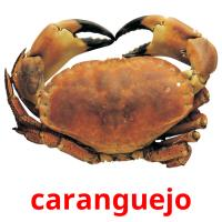 caranguejo picture flashcards
