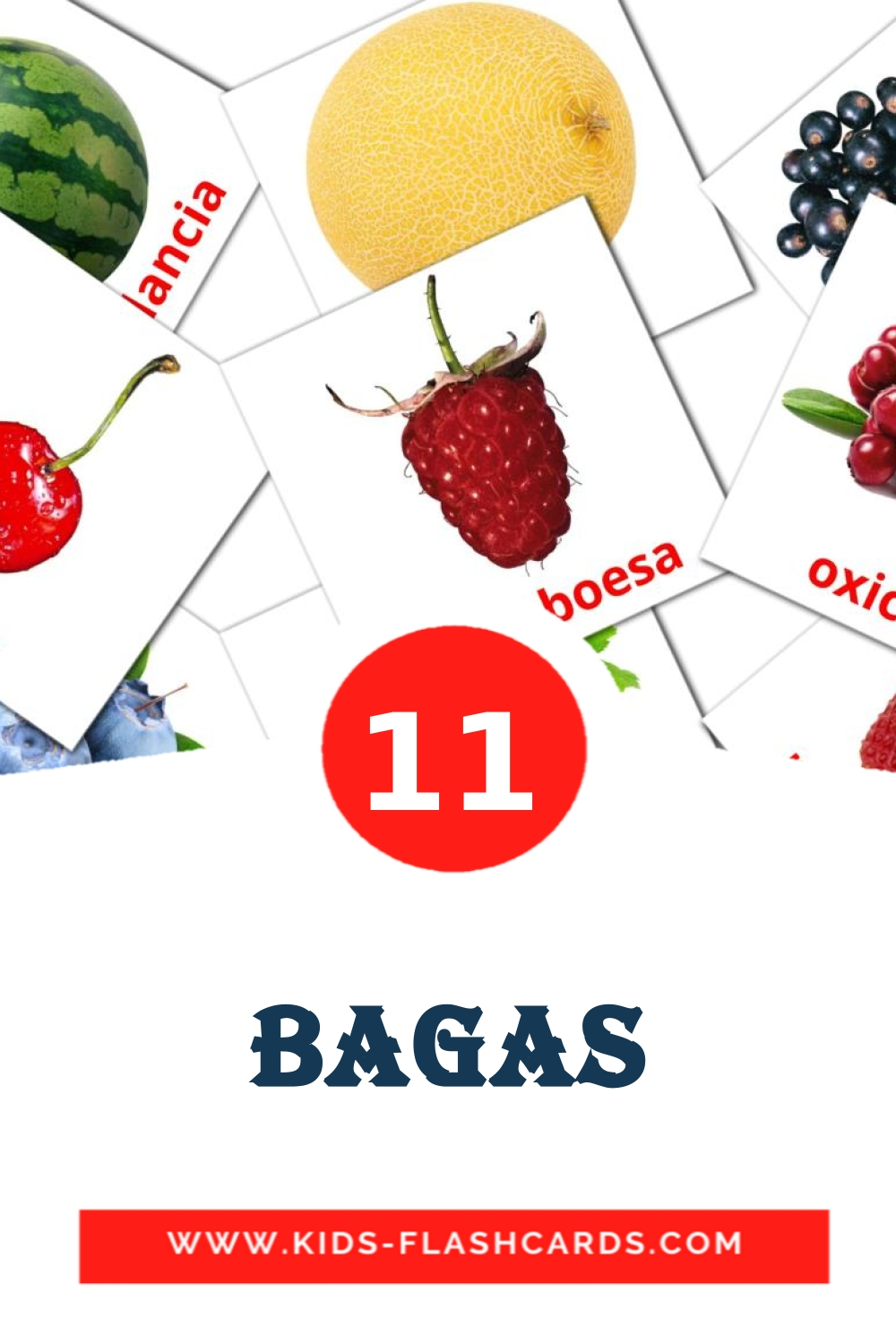 11 Bagas Picture Cards for Kindergarden in portuguese