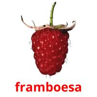 framboesa picture flashcards