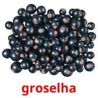 groselha picture flashcards