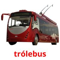 trólebus picture flashcards