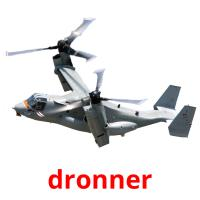 dronner picture flashcards