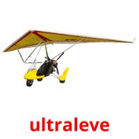 ultraleve picture flashcards