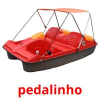 pedalinho picture flashcards