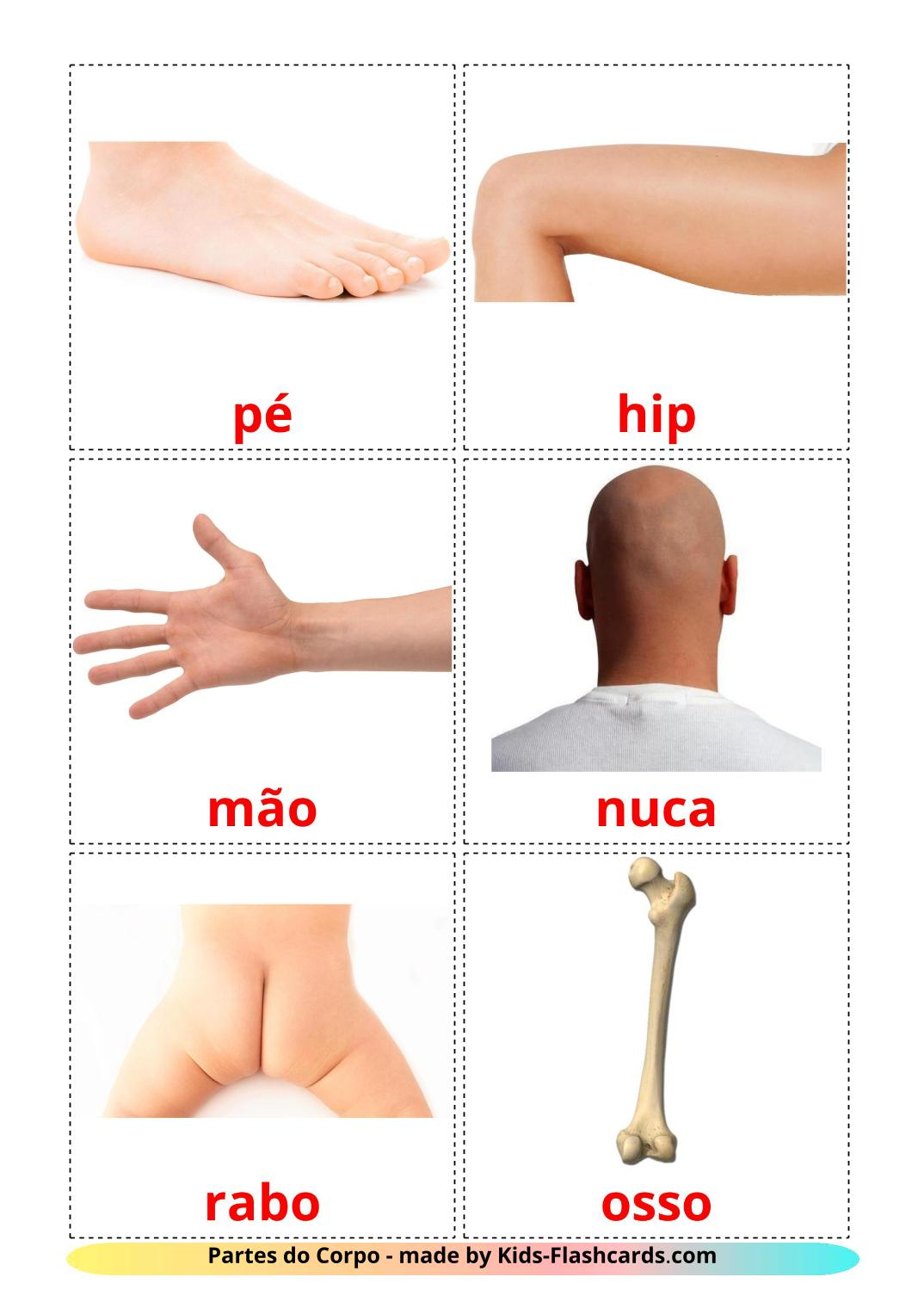 Body Parts - 26 Free Printable portuguese Flashcards