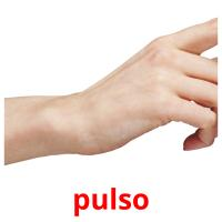 pulso picture flashcards