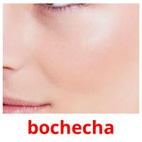 bochecha card for translate