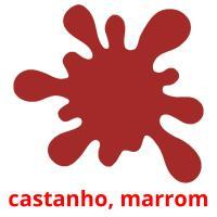 castanho picture flashcards