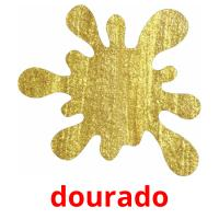 dourado picture flashcards