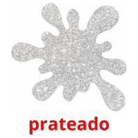 prateado picture flashcards