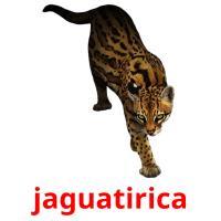 jaguatirica picture flashcards