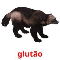 glutão picture flashcards