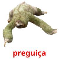 preguiça picture flashcards