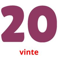 vinte picture flashcards