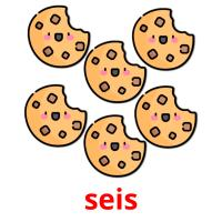 seis picture flashcards