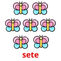 sete picture flashcards