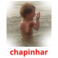 chapinhar picture flashcards