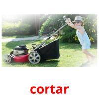cortar picture flashcards