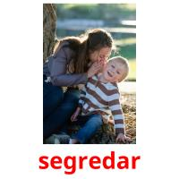 segredar picture flashcards
