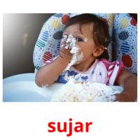 sujar picture flashcards