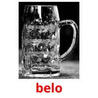 belo picture flashcards
