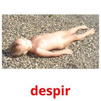 despir picture flashcards