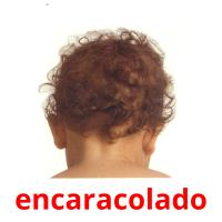 encaracolado picture flashcards
