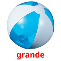 grande picture flashcards