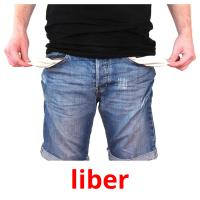 liber picture flashcards