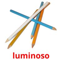 luminoso picture flashcards