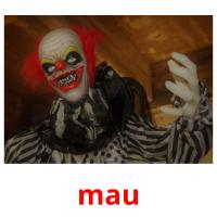 mau picture flashcards